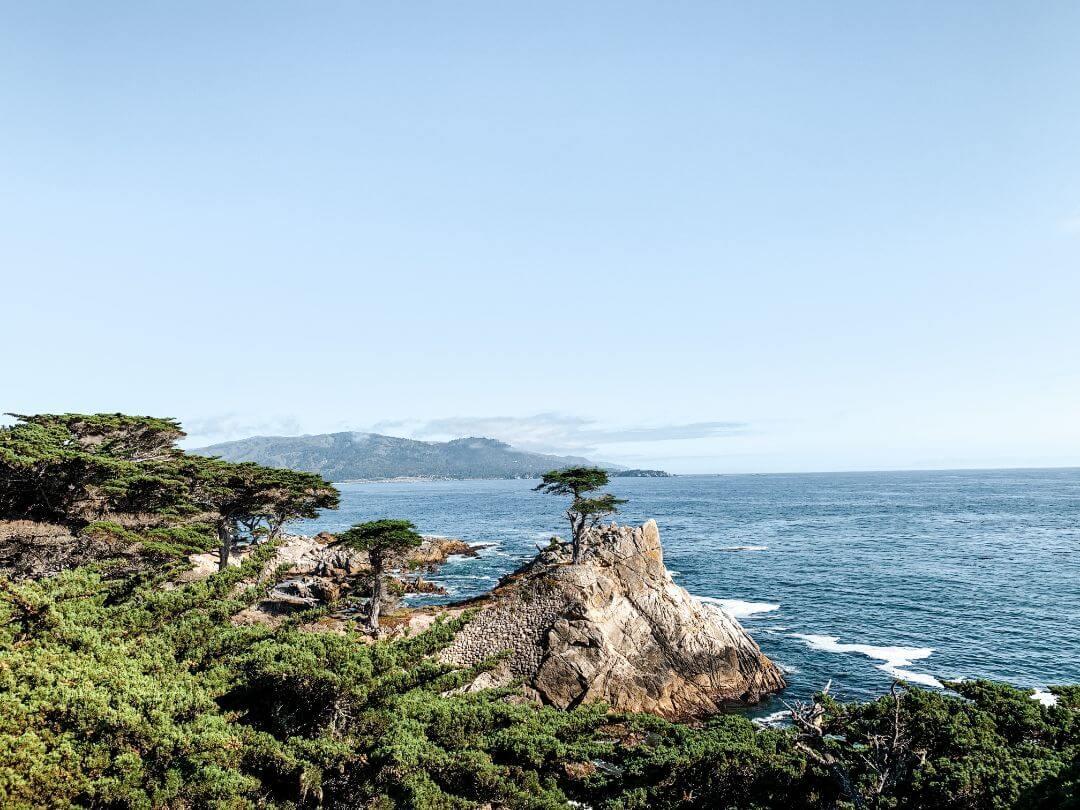 Cypress Tree à Carmel-by-Sea - Un road trip en Californie et dans l'Ouest américain